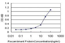 Anti-SERPINA10 Mouse Monoclonal Antibody