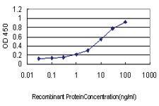 Anti-SH2D3C Mouse Monoclonal Antibody