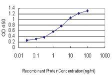 Anti-SLURP1 Mouse Monoclonal Antibody