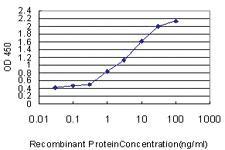 Anti-SPIRE1 Mouse Monoclonal Antibody