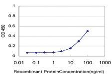 Anti-STAM2 Mouse Monoclonal Antibody