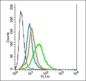 Anti-PPAP2A Rabbit Polyclonal Antibody