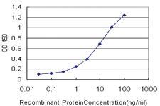 Anti-TACR1 Mouse Monoclonal Antibody