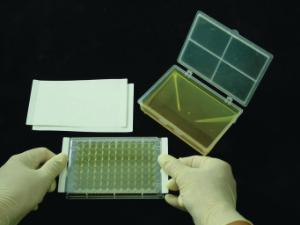 Polyester sealing film