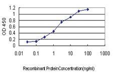 Anti-TNFRSF10A Mouse Monoclonal Antibody