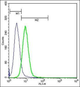 Anti-CCR2A Rabbit polyclonal antibody